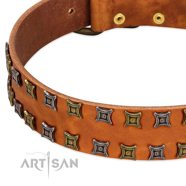 Strong leather dog collar for your stylish canine