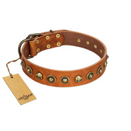 """Prez of the Pack"" FDT Artisan Tan Leather Bullmastiff Collar with Skulls and Brooches"