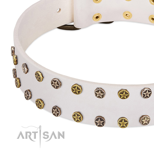 Remarkable embellishments on genuine leather collar for your canine