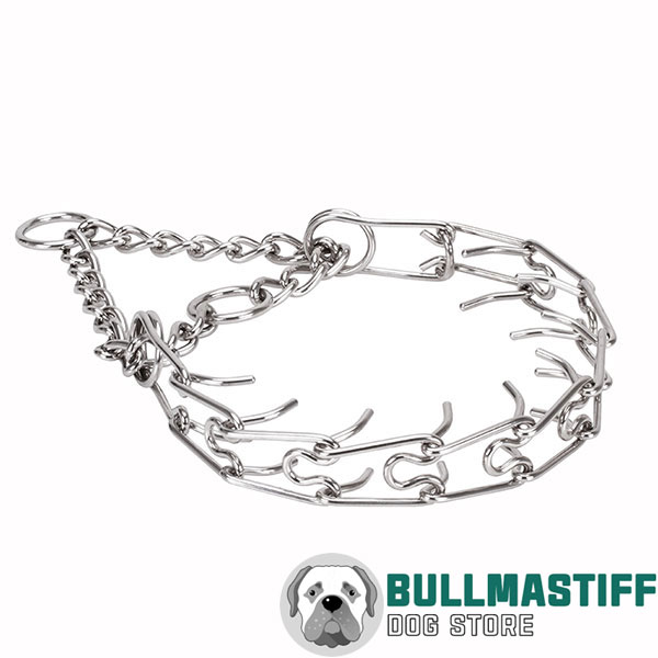 Pinch collar of reliable stainless steel for poorly behaved canines