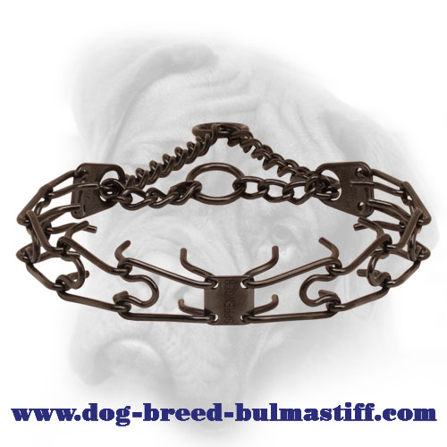 Prong collar of corrosion-proof black stainless steel for poorly behaved dogs