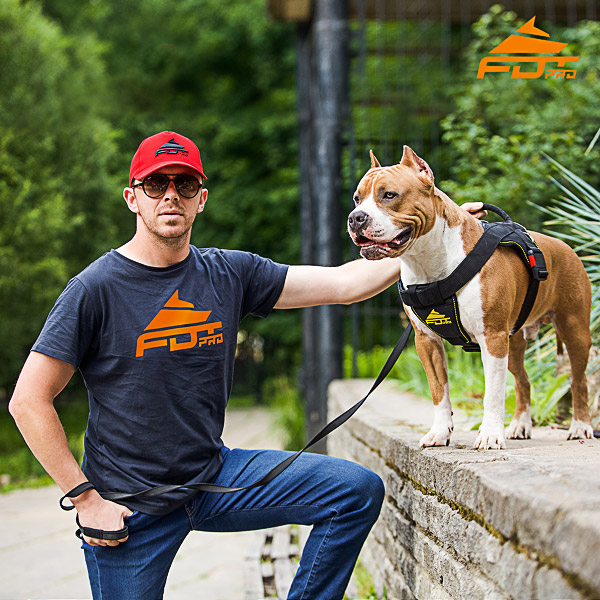 Men T-shirt of Top Notch Cotton with Orange Logo for Dog Trainers