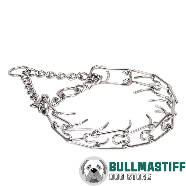 Corrosion resistant stainless steel pinch collar for badly behaved dogs