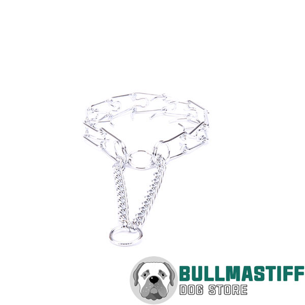 Pinch collar of chrome plated steel for aggressive canines