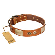 """Perfect Blend"" FDT Artisan Tan Leather Bullmastiff Collar 1 1/2 inch (40 mm) wide"
