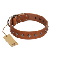 """Broadway"" Handmade FDT Artisan Tan Leather Bullmastiff Collar with Dotted Pyramids"