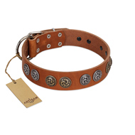 """Luxurious Life"" Premium Quality FDT Artisan Tan Leather Bullmastiff Collar with Round Adornments"