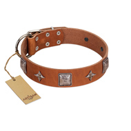 """Lucky Star"" FDT Artisan Tan Leather Bullmastiff Collar with Silver-Like Embellishments"