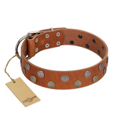 """Ancient Symbol"" Trendy FDT Artisan Tan Leather Bullmastiff Collar with Silver- and Gold-Like Studs"