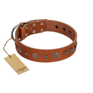 """Sweet Caramel"" Designer FDT Artisan Tan Leather Bullmastiff Collar"