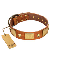 """Mutt The Daredevil"" FDT Artisan Tan Leather Bullmastiff Collar with Old Bronze-like Skulls and Plates"