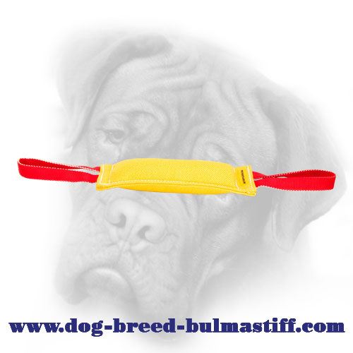 French linen tear resistant Bullmastiff bite tug