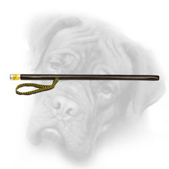 Stick for Bullmastiff agitation training