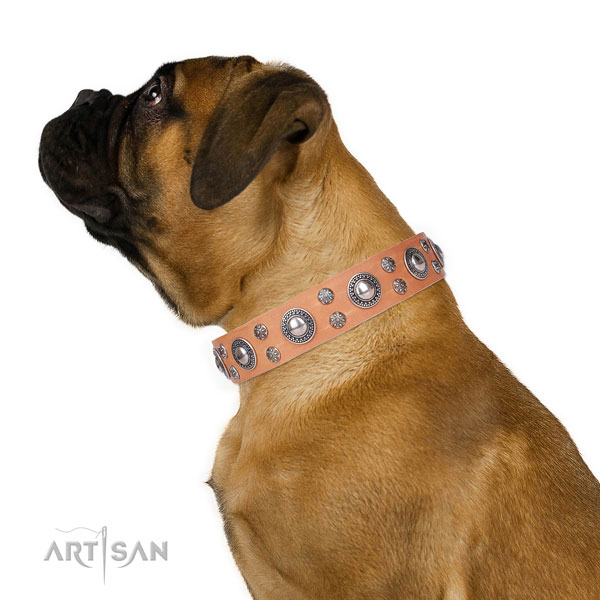 Basic training decorated dog collar of best quality leather