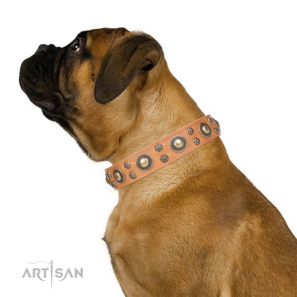 Comfy wearing embellished dog collar of high quality material