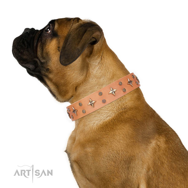 Everyday use embellished dog collar of durable material