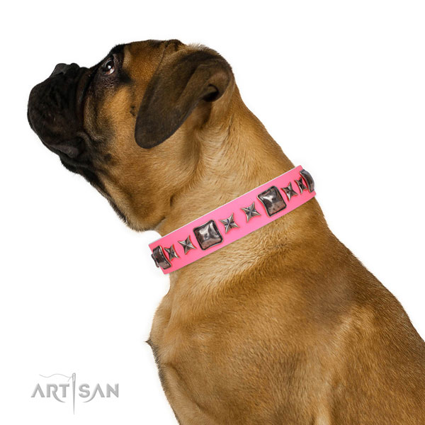 Top notch studded natural leather dog collar for comfy wearing