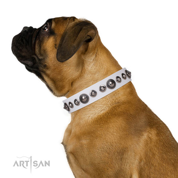 Unique embellished leather dog collar for walking