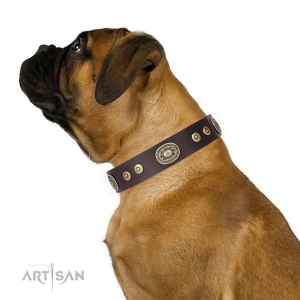 Exquisite adorned genuine leather dog collar for comfortable wearing