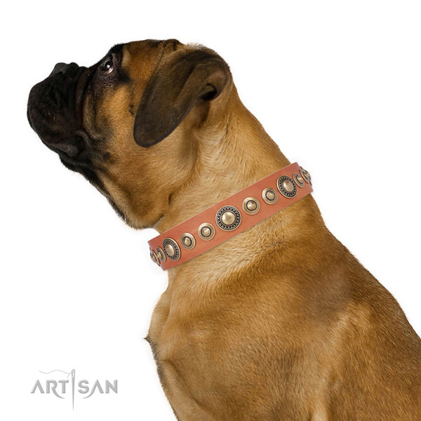 Reliable buckle and D-ring on leather dog collar for stylish walking