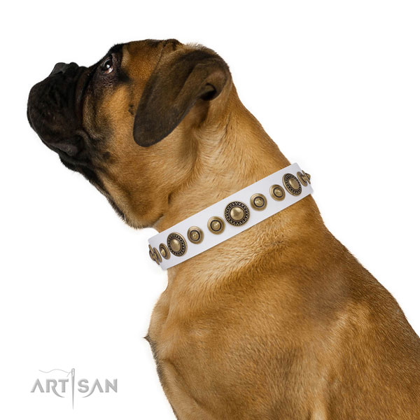 Durable buckle and D-ring on natural leather dog collar for everyday walking