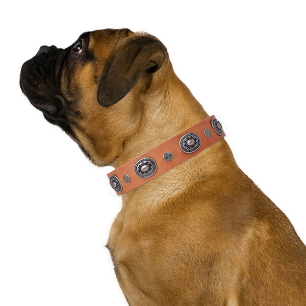 Natural leather dog collar with strong buckle and D-ring for easy wearing