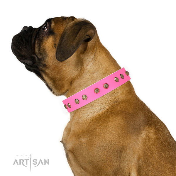 Exquisite embellishments on comfortable wearing full grain genuine leather dog collar