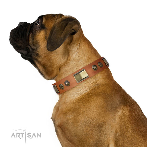 Stylish adornments on comfy wearing dog collar