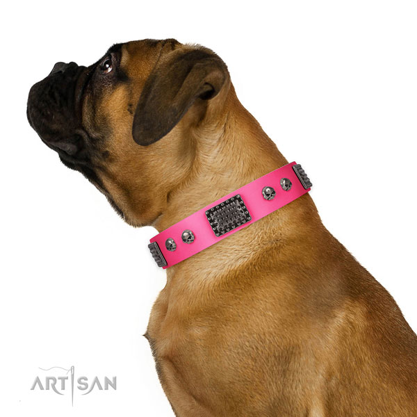 Stunning genuine leather collar for your handsome four-legged friend