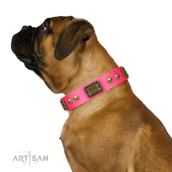 Corrosion proof hardware on leather dog collar for daily walking