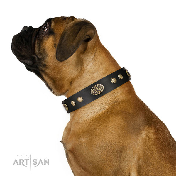 Corrosion resistant fittings on natural leather dog collar for daily use