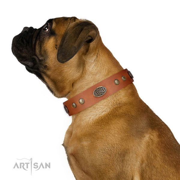 Corrosion resistant buckle on leather dog collar for easy wearing