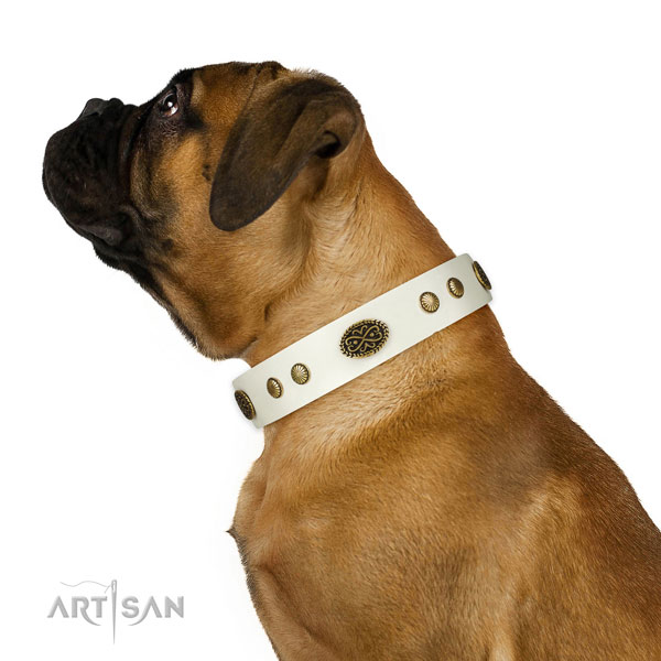 Rust-proof traditional buckle on natural leather dog collar for walking