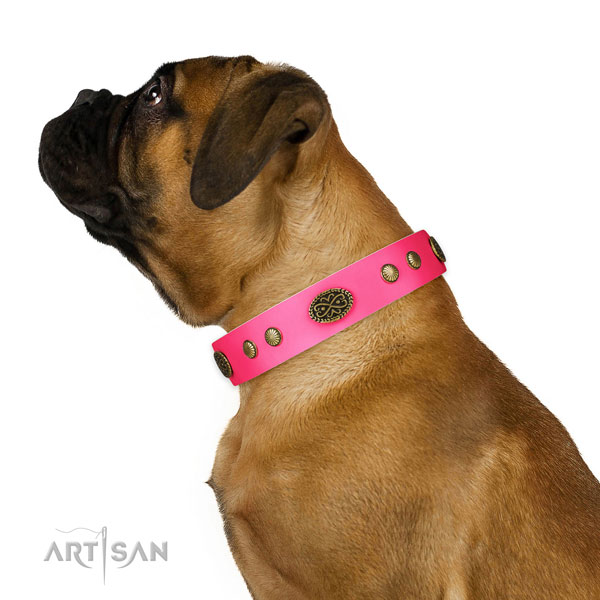 Rust resistant fittings on natural leather dog collar for fancy walking