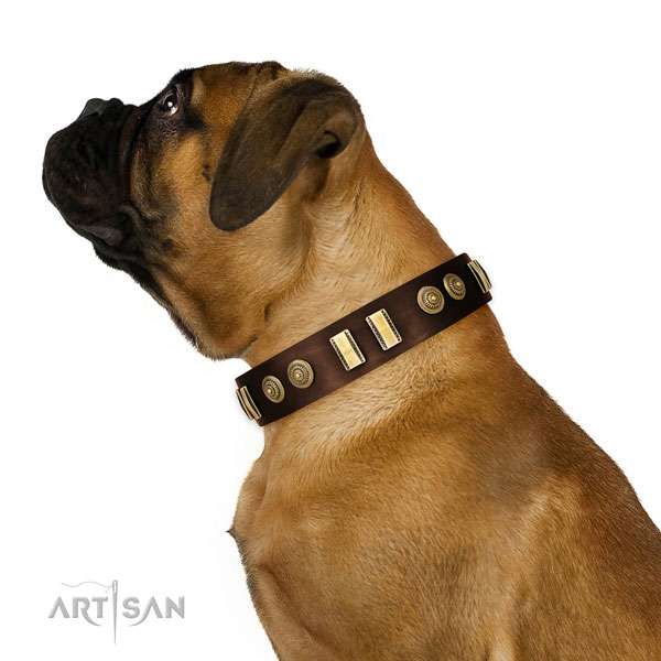 Corrosion resistant traditional buckle on genuine leather dog collar for daily walking