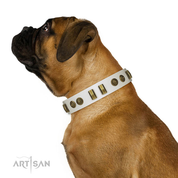Walking dog collar of genuine leather with extraordinary embellishments