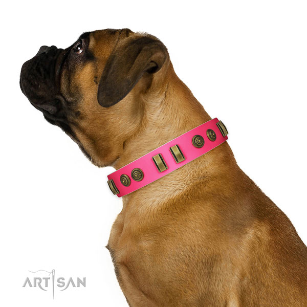 Stylish walking dog collar of genuine leather with awesome studs
