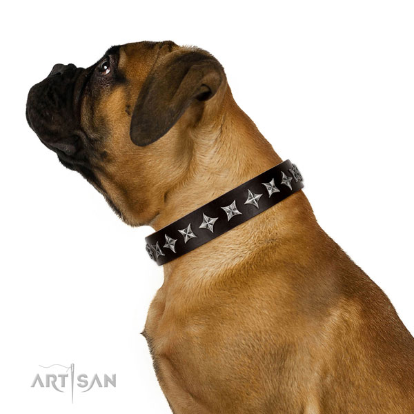 Daily walking adorned dog collar of high quality leather