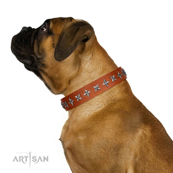 Finest quality full grain leather dog collar with amazing embellishments