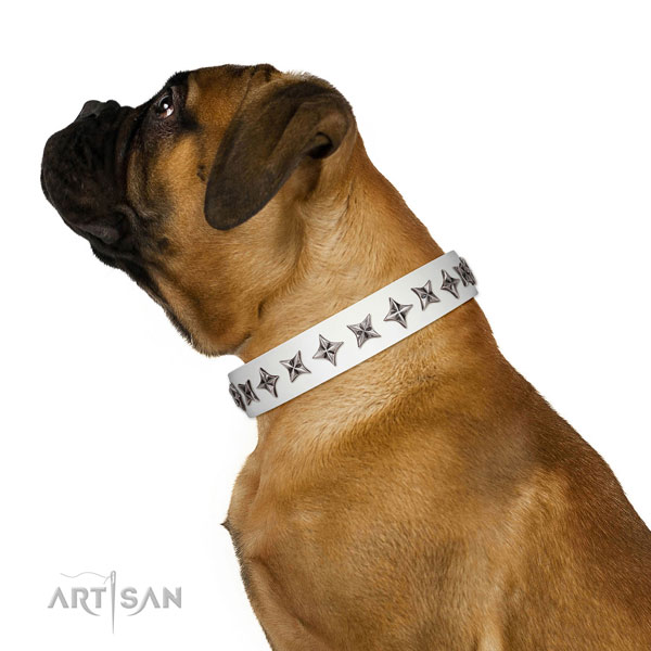 Top quality full grain natural leather dog collar with designer studs