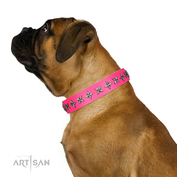 Fine quality full grain leather dog collar with exceptional decorations