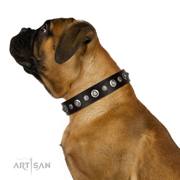 Durable full grain natural leather dog collar with designer studs