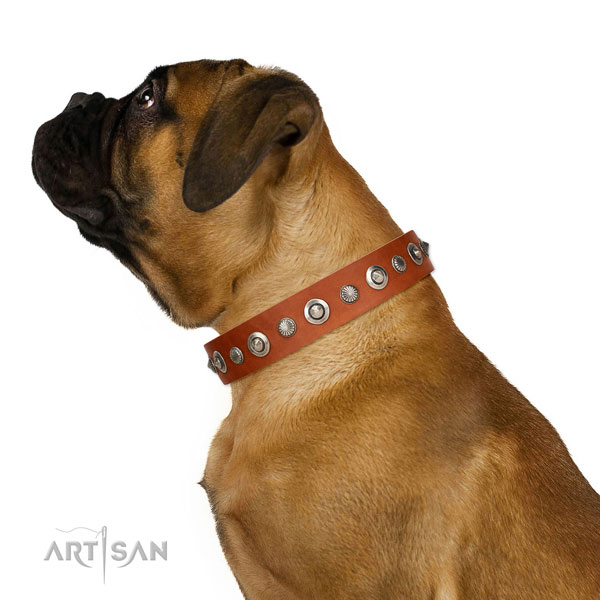 Genuine leather collar with corrosion proof D-ring for your impressive doggie
