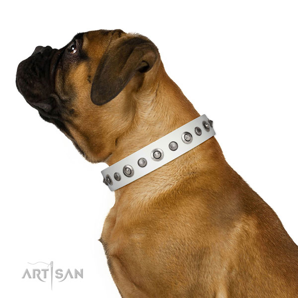 Full grain natural leather collar with reliable traditional buckle for your lovely canine