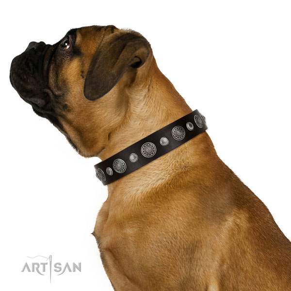 Designer full grain leather dog collar with corrosion proof buckle