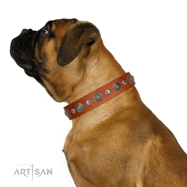 Easy to adjust full grain leather dog collar with rust resistant hardware