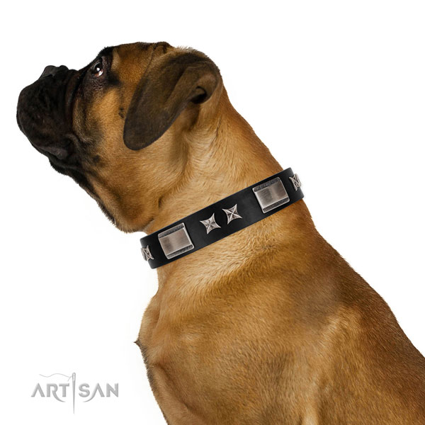 Walking soft natural leather dog collar with adornments