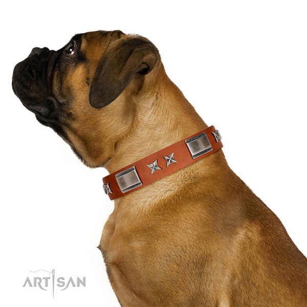 Everyday use gentle to touch natural leather dog collar with adornments