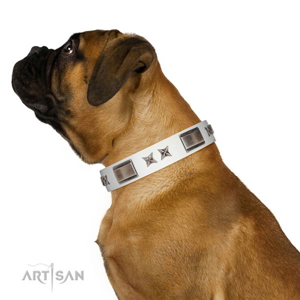 Exquisite collar of full grain genuine leather for your attractive four-legged friend