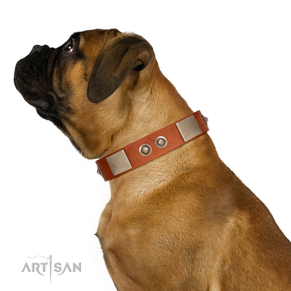Reliable fittings on leather dog collar for basic training